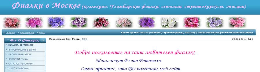 Сайт-магазин о фиалках