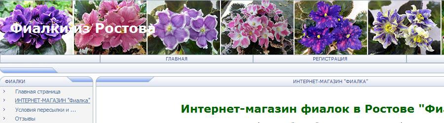 Продвижение интернет-магазина фиалок Виктории Титовской