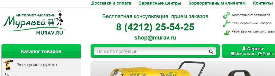 Продвижение интернет-магазина Муравей